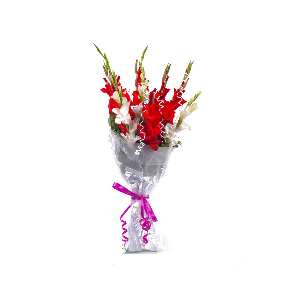 Kitchen Cuisine Default Category Red & White Gladiolus